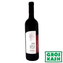 Vin Ein Karem Année 2012 Sec Rouge 750ml kosher lepessah BETH YOSSEF